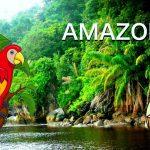 Juego de Mesa Amazonas, Cómo se juega (RESEÑA)